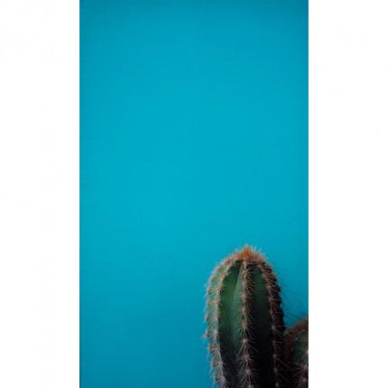 Obraz drukowany na płótnie kaktus MHD0-02-05