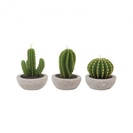 Trzy świeczki kaktusy - zestaw MHD0-04-01