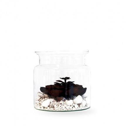 Średni szklany słój MHD0-06-04